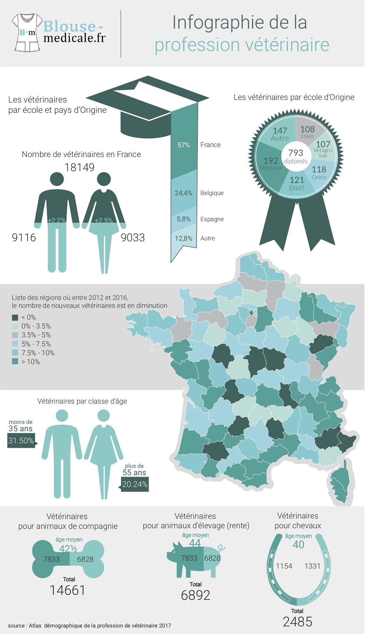 Infographie profession vétérinaire